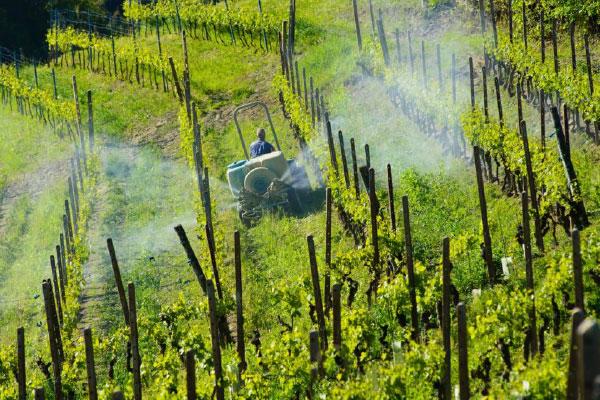 Sav scorte agrarie - agricoltura